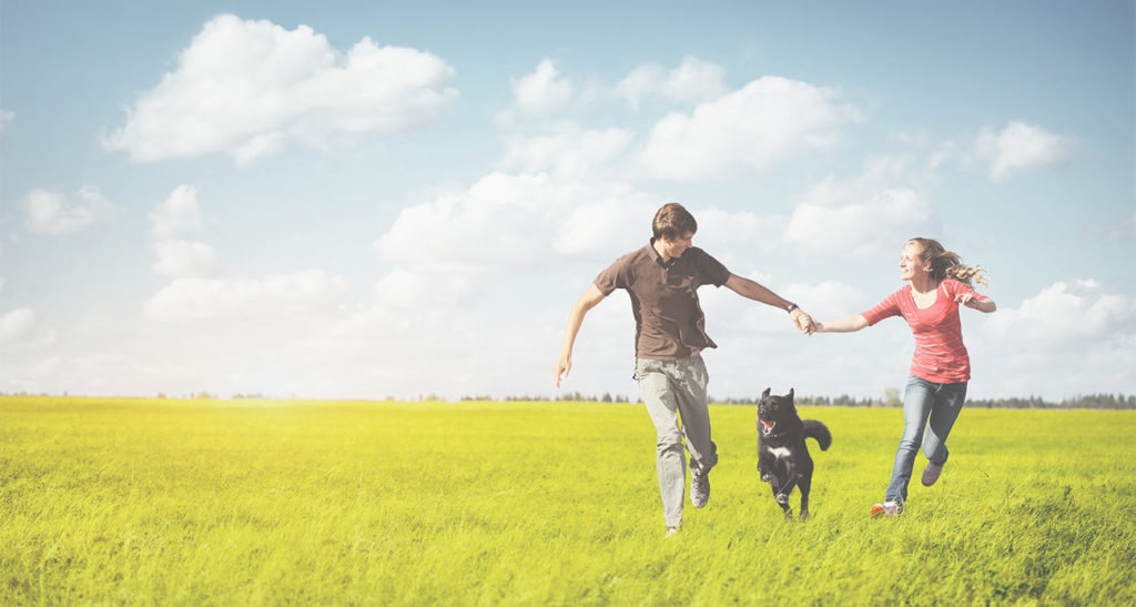Couple and Dog Running Happily in Field